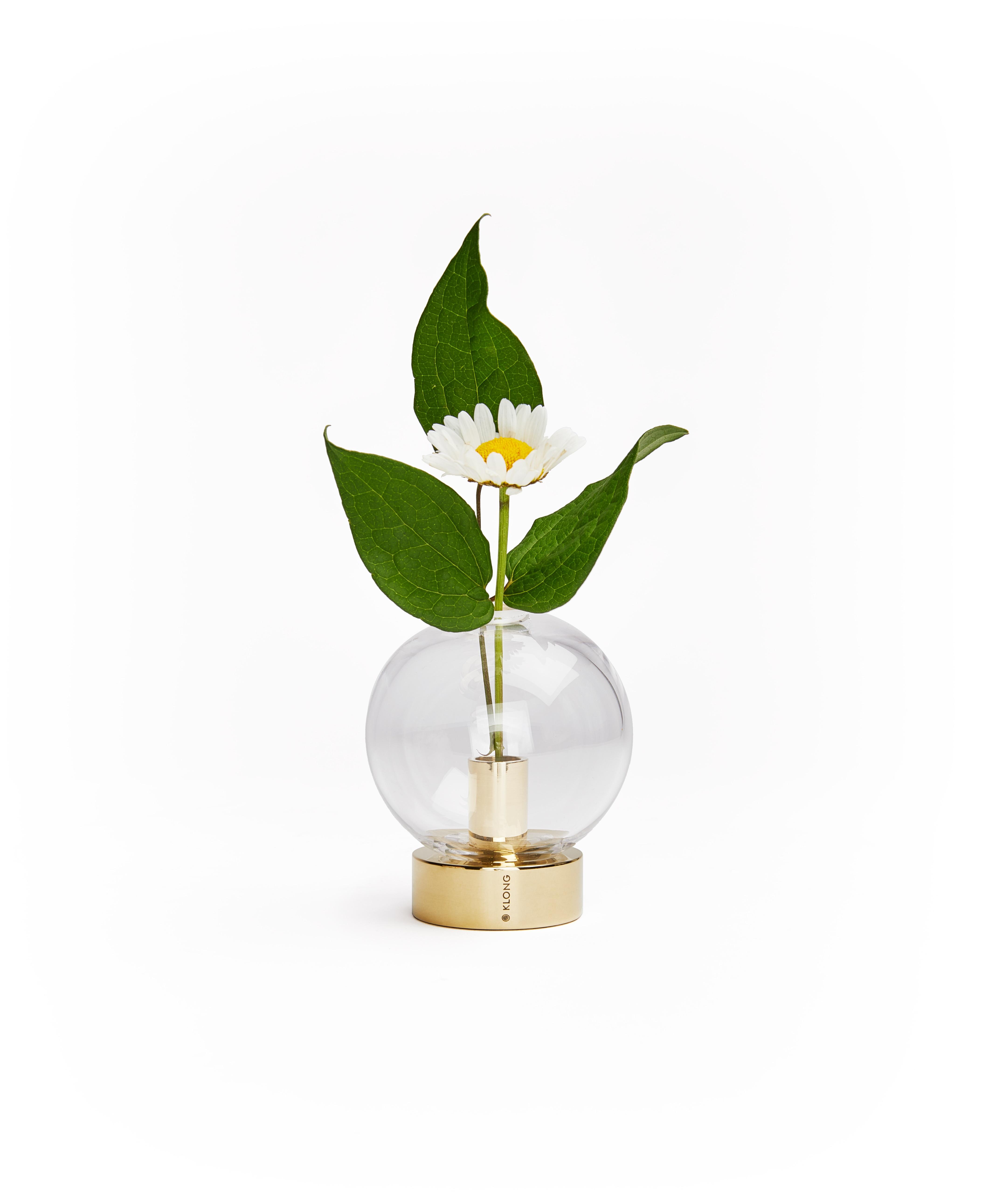 Orbis med blomma